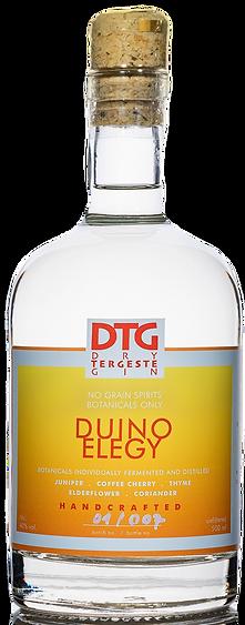 Dry Tergeste Gin Duino Elegy Tržaški džin