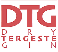 DTG LOGO only.png