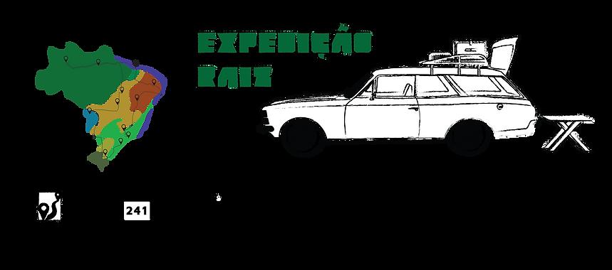 Infográfico com as informações da Expedição Raiz