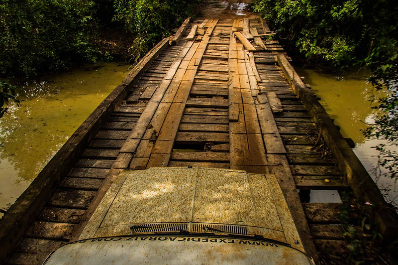 03.Fotos_MS_Pantanal Select-_MG_6947-BAI