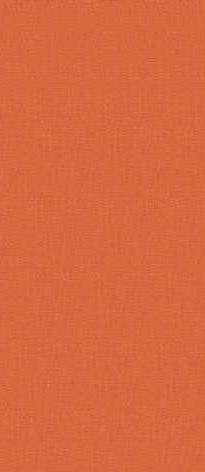 orange foncé référence P2