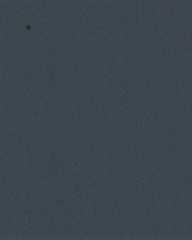 gris anthracite référence C13