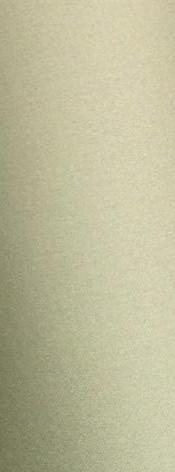 olive brillant référence A9