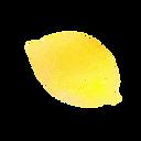 レモン.png