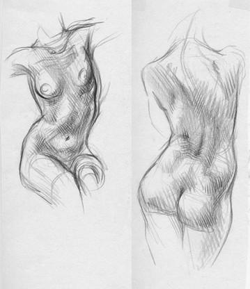 Life Drawings of Woman Torso