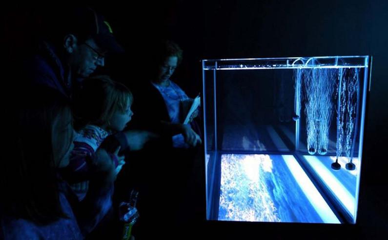 channel 2– aquarium