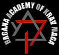 The Offical Hagana Academy Logo