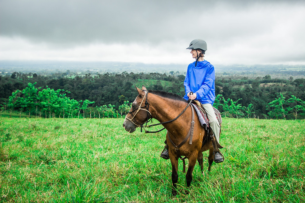 animal communication with a horse on a Costa Rican trail