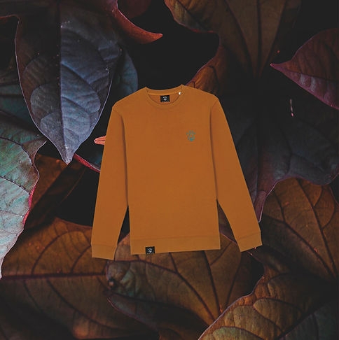 Otso Burnt Orange Sweater Front on Leafs