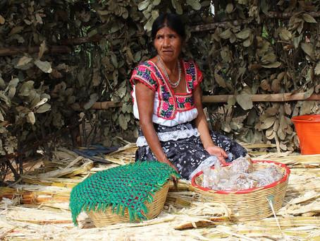 La posición económica desfavorable de las comunidades Wixaritari.