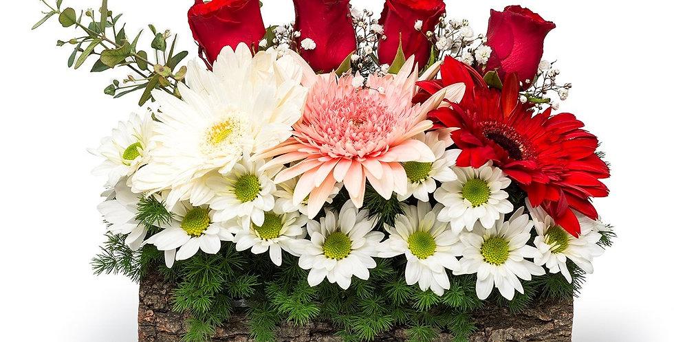 Kütükte Çiçekler