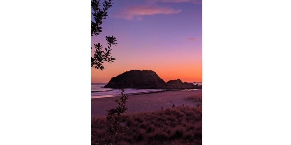 Moturiki (Leisure Island) at Dawn
