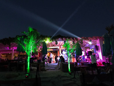 Aslanis Events | Private party @ Hippy fish Mykonos