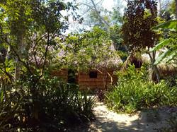 Santuario de Girasoles