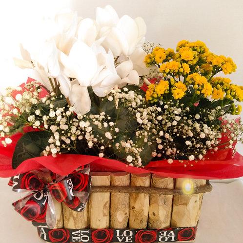 cestas de vasos