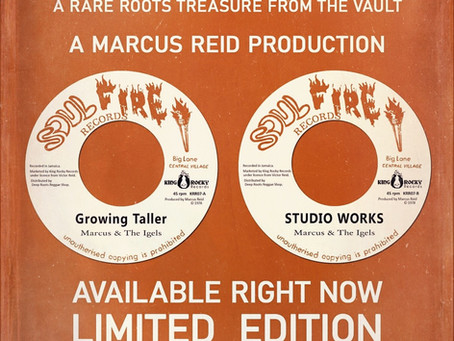 MARCUS & THE IGELS, Growing Taller + Studio Works, disponible sur King Rocky Records.