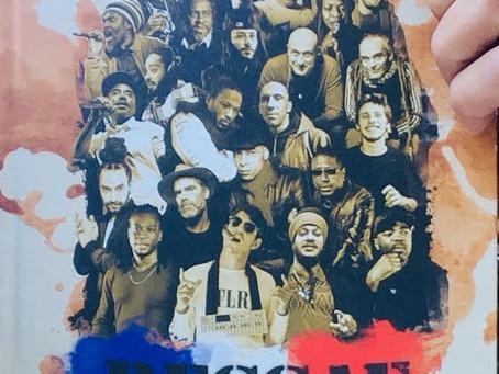 REGGAE AMBASSADORS, 100% Reggae français,un livre et un film.