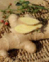 ginger 2.jpg