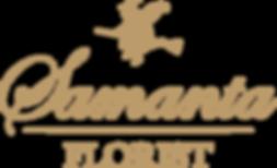 Half-Logo-compressor.png