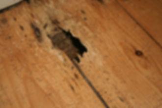 Broken floor.JPG