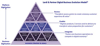 Digital Business Evolution Model