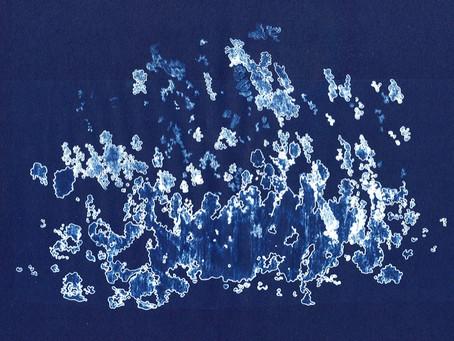 Blue Print Experiments