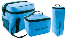 Picnic Insulated Cooler Bag - 4 Sizes