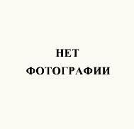 К. Нечаева