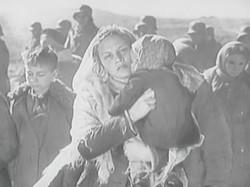 Боевой киносборник №12. Сын бойца (1942)