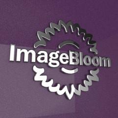 ImageBloom_3DLogo_KS.mp4
