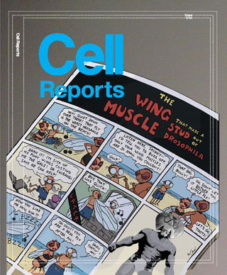Cover art for Cell Reports