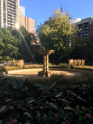 The Bird Bath at Washington Square Park, Chicago. Taken during Julia and Troy's SfN 2019 trip.