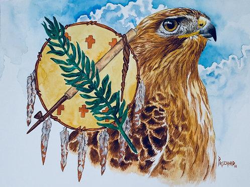 Oklahoma  Hawk & Battle Shield
