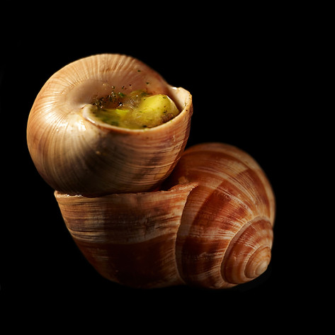 W18-escargot2-3000.jpg