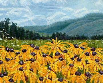 Sunflowers  upstate new york