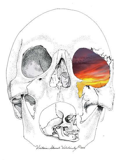skulls, pastel landscapes