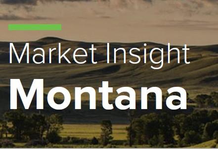 Market Insight - Montana