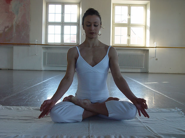 INTEGRALARTS Yoga, Meditation, Gyrotonic, Tanz in Augsburg Privat & Einzelstunden