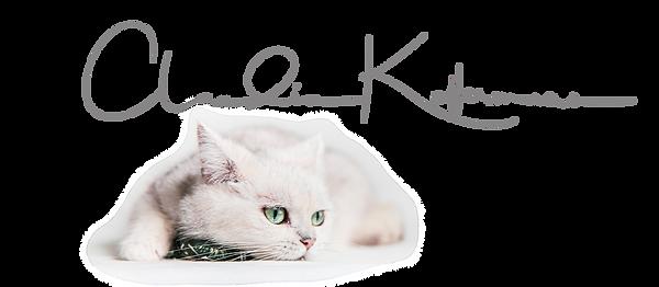 Logo Coco Wix grau klein.tif