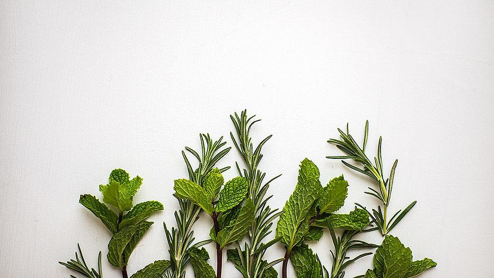 Herbal Oasis Wax Melt