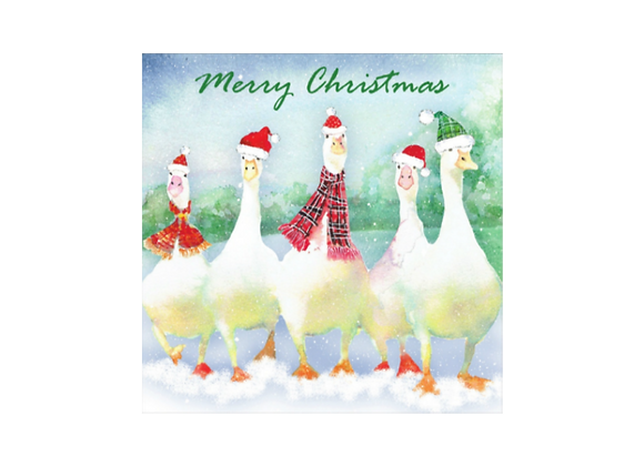 Flock of Geese - Pack of 10 cards