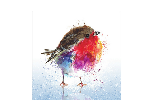Fluffy robin on ice - Pack of 10 cards
