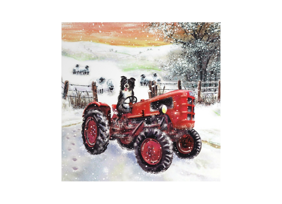 Driving the tractor - Pack of 10 cards