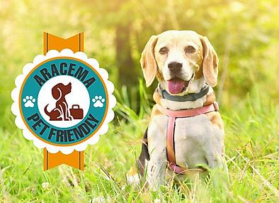 PET FRENDLY 2.jpg