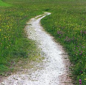 trail-352284_1920.jpg