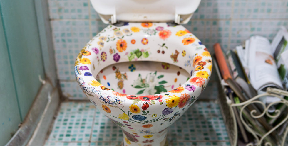 Varicoloured toilet