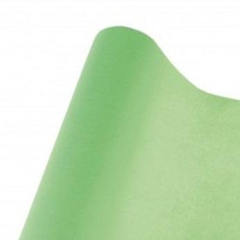 Nappe Intissée  de 10 m - Vert Amande