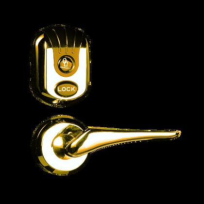 Fox FL- 006GT - Κλειδαριά RFID - Ασημί