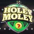 HOLEY MOLEY.jpg