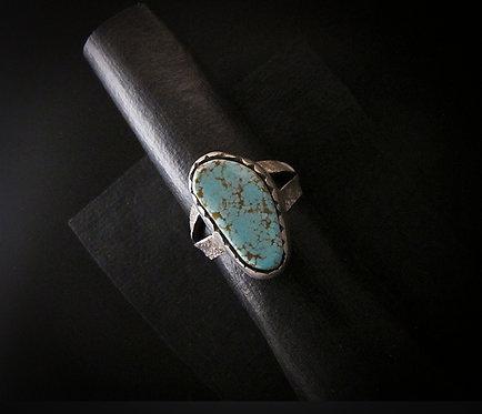 Shandiin Ashikii Wood Tufa Cast Sterling Silver & Turquoise Ring